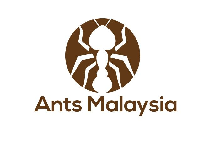 Ants Malaysia